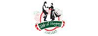 Taste of Hungary - Chicago